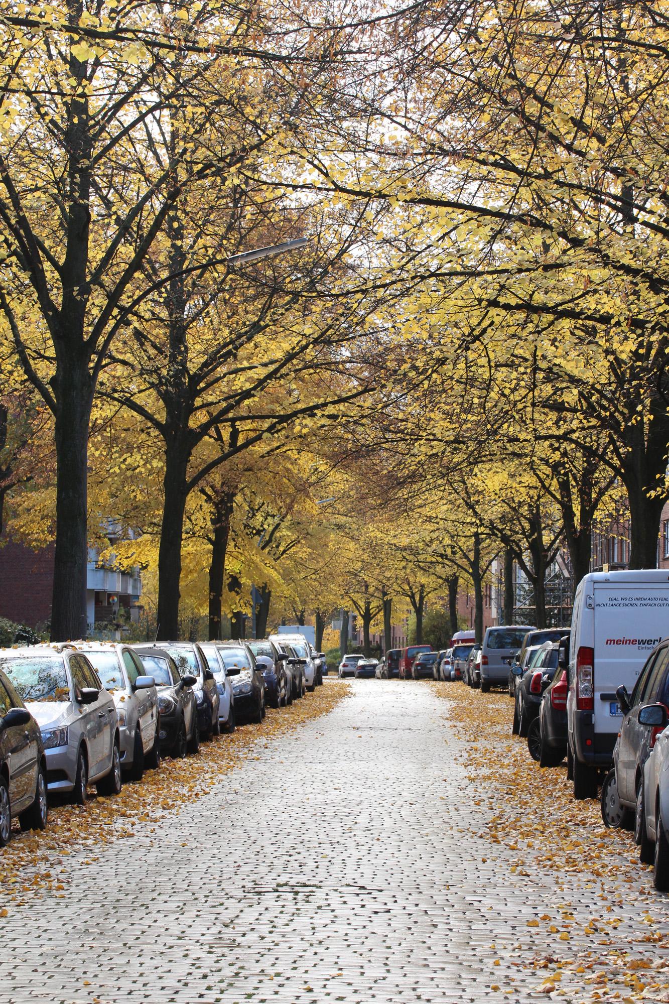 Herbststimmung in Hamburg