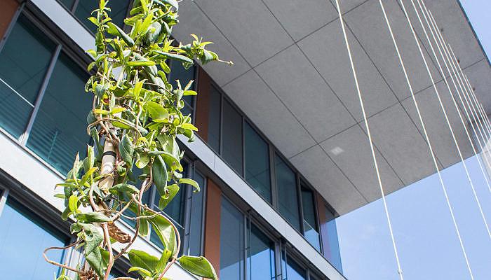 Ausbildungszentrum Stromnetz Hamburg